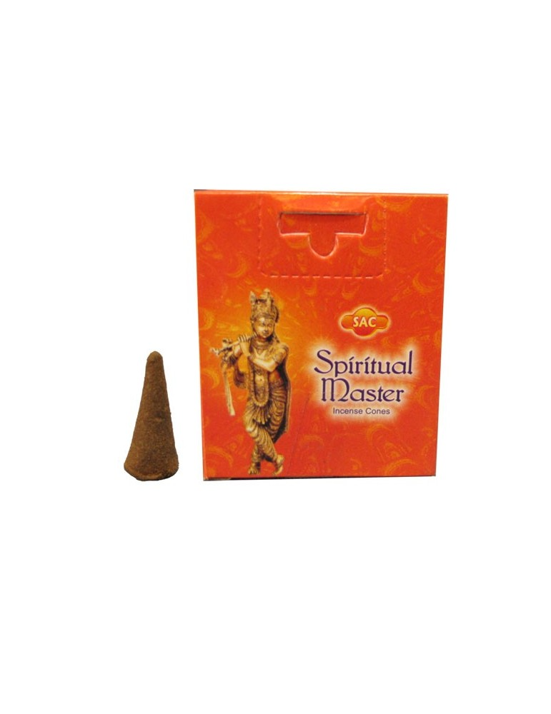 Money Drawing - SAC (Mystical Series) Incense Cones