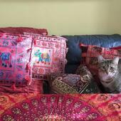 Elephant Boho Elephant  🐘🐘🐘              #homedecor #homedesign #interiordesign #indiantapestry #tapestry #drap #murales #meditationdecor #bohodecor #hippiestyle #bohemianstyle #elephantdecor #decorativepillows #yogainspiration #decomaison  #montreal #montréal #ruestdenis #montrealentrepreneurs #montrealshopping #shoplocal #shoplocalmontreal #514 #mtlblog #mtlshopping #shoplocalcanada @sdquartierlatin #cangift #cangiftvs #cangiftvirtualmkt @cangift #wholesale